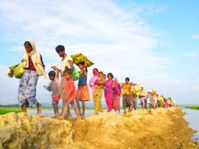 Rohingya Refugee | South Asia Politics